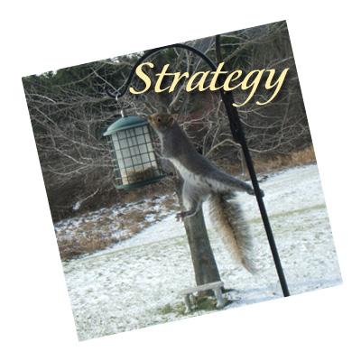 1-img-strategy